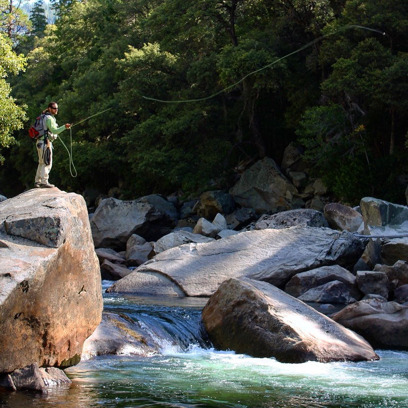 Yosemite fly fishing guide fly fishing in yosemite for Fly fishing vacation packages