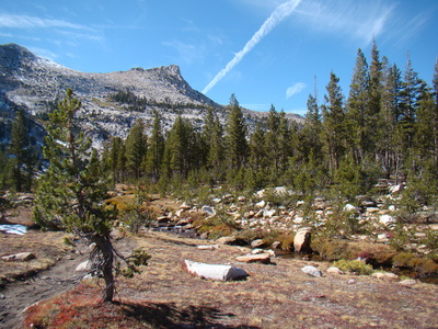 Yosemite sightseeing hikes
