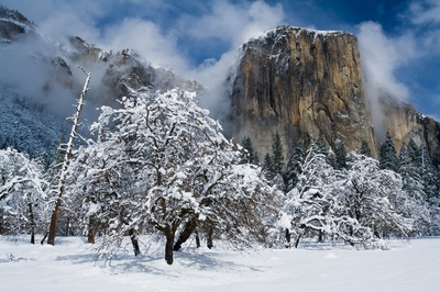 Yosemite winter tours