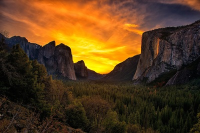 One day tours of Yosemite